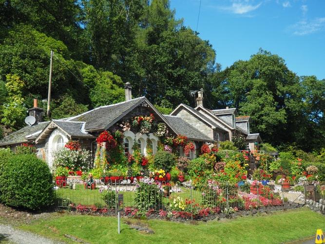 Maison au jardin très fleuri avec beaucoup de plantes vertes