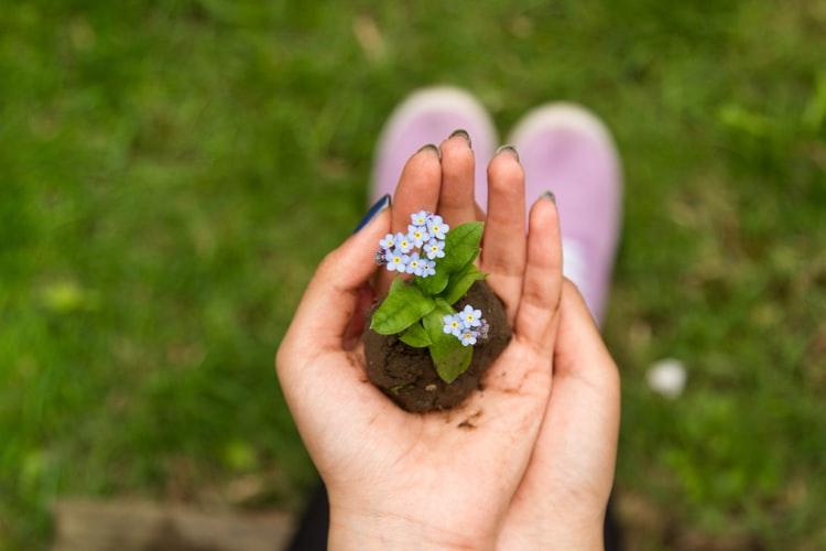 Jeune femme à la main verte qui tient une plante au creux de sa main